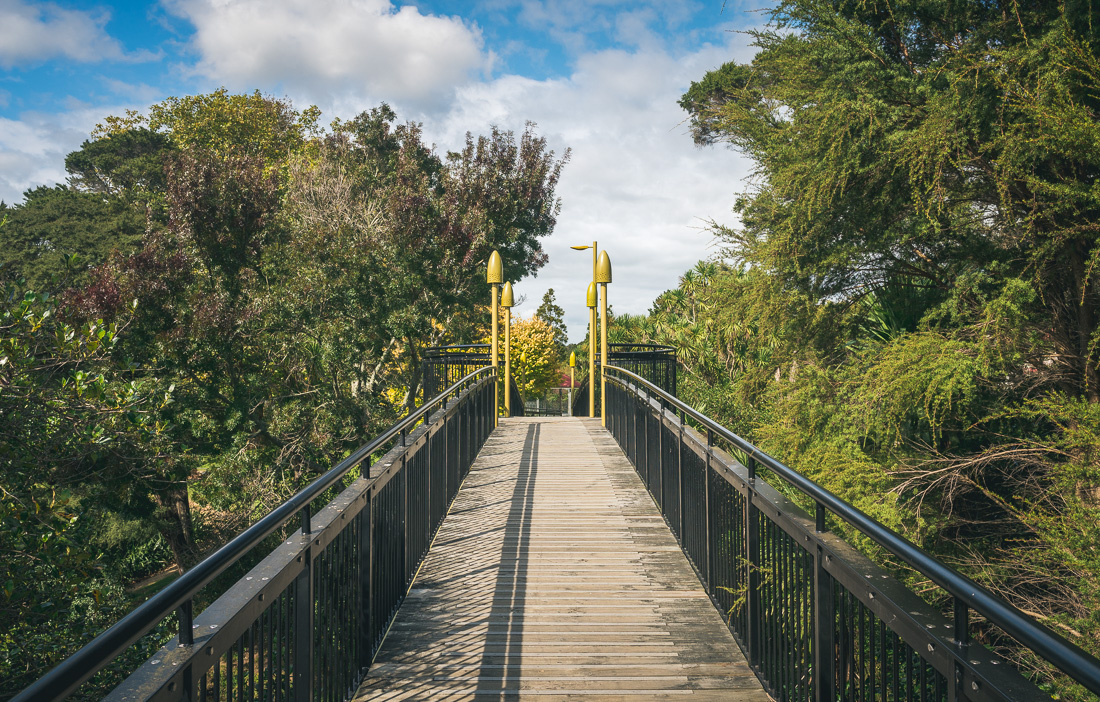 twin streams walkway in henderson, auckland