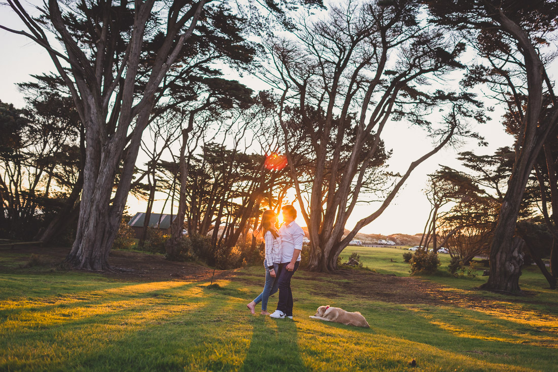 sunset portrait muriwai couple engagement